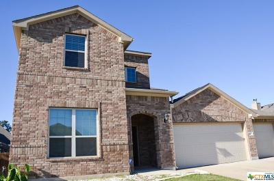 Killeen Single Family Home For Sale: 6207 Serpentine Drive