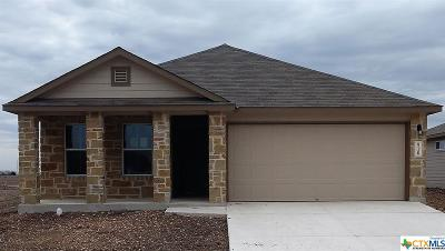 New Braunfels Single Family Home For Sale: 910 Pumpkin Ridge Drive