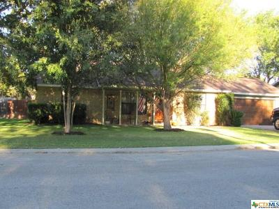 Comal County Single Family Home For Sale: 1113 Lazy Trl