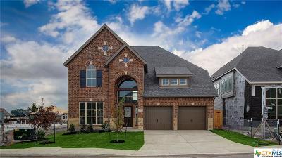 San Antonio Single Family Home For Sale: 14362 Palomino Place