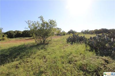 Salado Residential Lots & Land For Sale: Lot 17 Stone Russell Drive