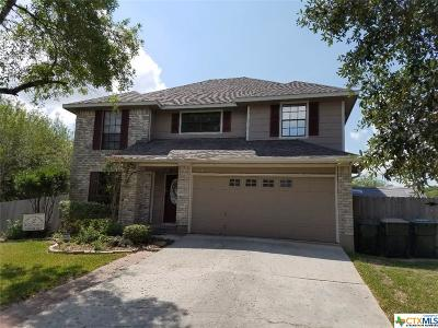 San Marcos Single Family Home For Sale: 712 Crystal