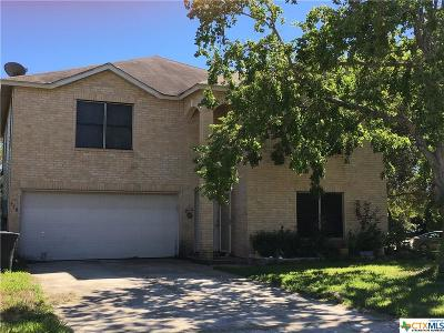 New Braunfels Single Family Home For Sale: 350 Stone