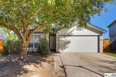 New Braunfels Single Family Home For Sale: 2463 Fannin