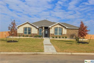 Salado Single Family Home For Sale: 3202 Saint Luke
