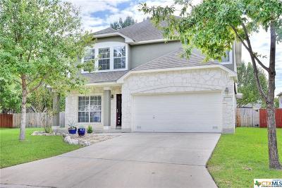 San Antonio Single Family Home For Sale: 14222 Before Dawn