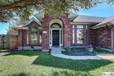 Buda Single Family Home For Sale: 127 Saguaro