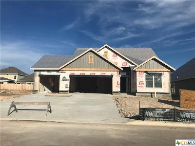 Bell County, Coryell County, Lampasas County Single Family Home For Sale: 5337 Lancaster Drive
