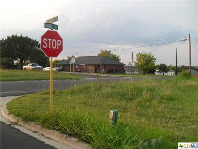 Killeen Residential Lots & Land For Sale: 3801 Turner Avenue