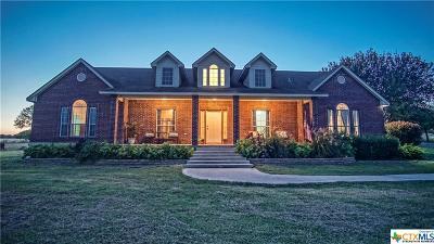 Cibolo Single Family Home For Sale: 453 Tolle Road
