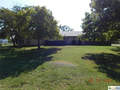 Kempner Single Family Home For Sale: 770 County Road 4756