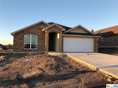 Temple TX Single Family Home For Sale: $191,900