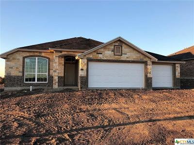 Temple TX Single Family Home For Sale: $192,900