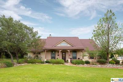 Canyon Lake Single Family Home For Sale: 558 Rebecca Creek Road