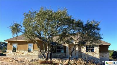 New Braunfels Single Family Home For Sale: 664 Cambridge Drive