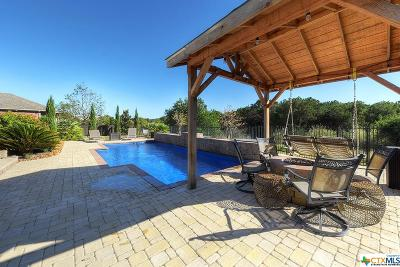New Braunfels Single Family Home Pending Take Backups: 262 Arendes Drive