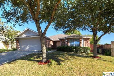 San Antonio Single Family Home For Sale: 7750 Beechnut Oak