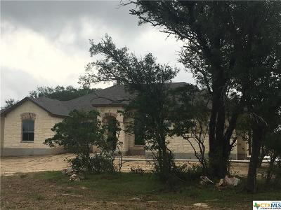 New Braunfels Single Family Home For Sale: 529 Cambridge Drive
