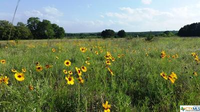 Lampasas Residential Lots & Land For Sale: Tract B County Road 1139