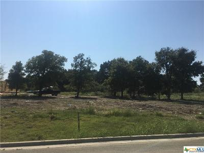 Harker Heights Residential Lots & Land For Sale: 3906 Del Rey