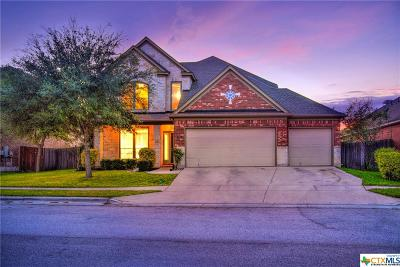 Seguin Single Family Home For Sale: 3014 Mustang Meadow