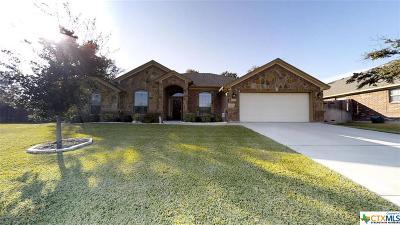Belton Single Family Home For Sale: 3301 Ten Bits Drive