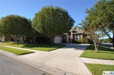 Cibolo Single Family Home For Sale: 201 Summit