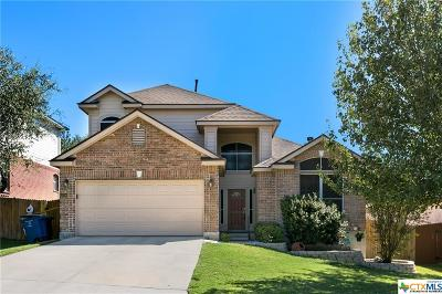 San Antonio Single Family Home For Sale: 22706 Wichita