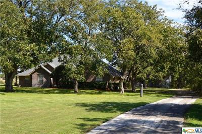 Seguin Single Family Home For Sale: 8305 State Highway 123