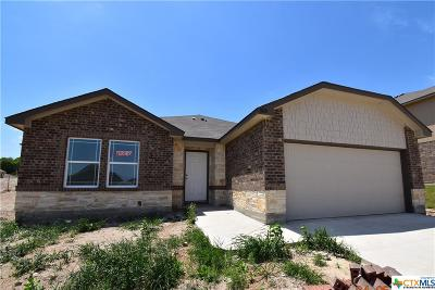 Harker Heights, Killeen, Temple Single Family Home For Sale: 3810 Appalachian Trail