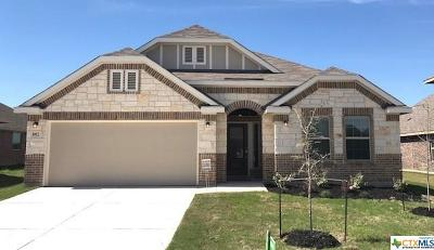 New Braunfels Single Family Home For Sale: 882 Serene Hills