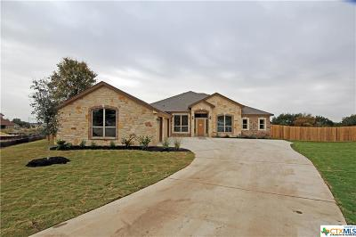 Belton Single Family Home For Sale: 2904 Presidio