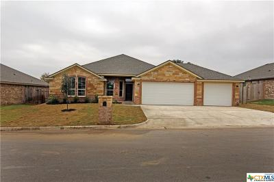 Belton Single Family Home For Sale: 2105 Yturria