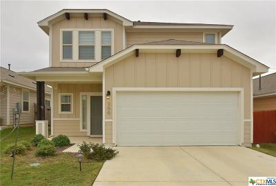 Buda Single Family Home For Sale: 266 Twisted Oaks