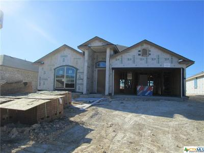 Bell County, Coryell County, Lampasas County Single Family Home For Sale: 6403 Katy Creek Lane