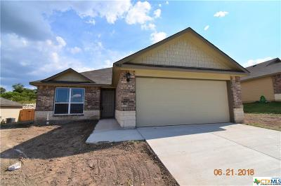 Harker Heights, Killeen, Temple Single Family Home For Sale: 3802 Flatrock Mountain Trail