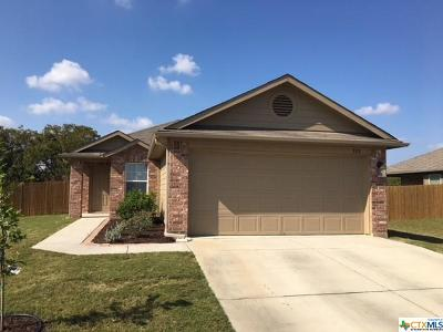 Kyle TX Single Family Home For Sale: $191,000