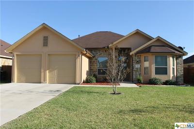 Kyle Single Family Home For Sale: 201 Dark Forrest
