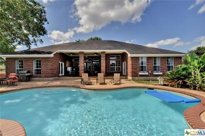 Buda TX Single Family Home For Sale: $579,000