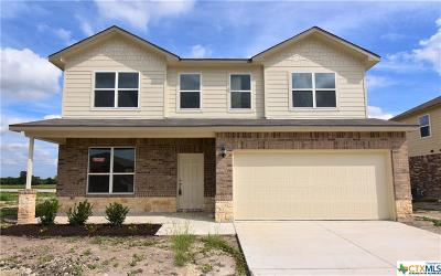 Killeen Single Family Home For Sale: 6704 Catherine Drive