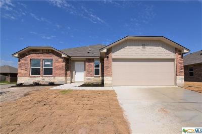Killeen Single Family Home For Sale: 6707 Catherine Drive
