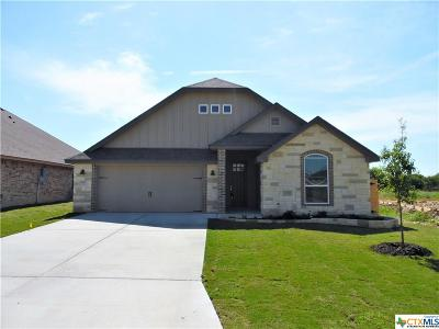 Temple TX Single Family Home For Sale: $229,130