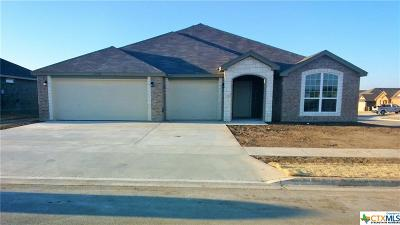 Bell County, Coryell County, Lampasas County Single Family Home For Sale: 4508 Colonel Drive