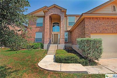 Cibolo Single Family Home For Sale: 214 Raleigh