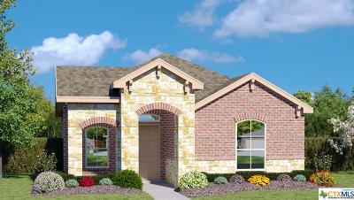 San Marcos Single Family Home For Sale: 4021 Skylark Lane