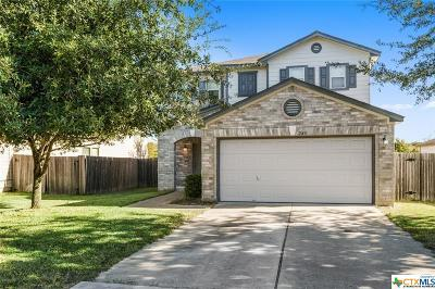 Kyle Single Family Home For Sale: 240 Beech