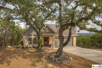 Wimberley Single Family Home For Sale: 55 Saddle Rock Ridge