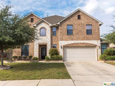 Buda TX Single Family Home For Sale: $385,000