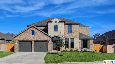 San Antonio Single Family Home For Sale: 1710 Cottonwood Park