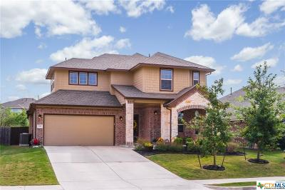 Hays County Single Family Home For Sale: 726 Easton